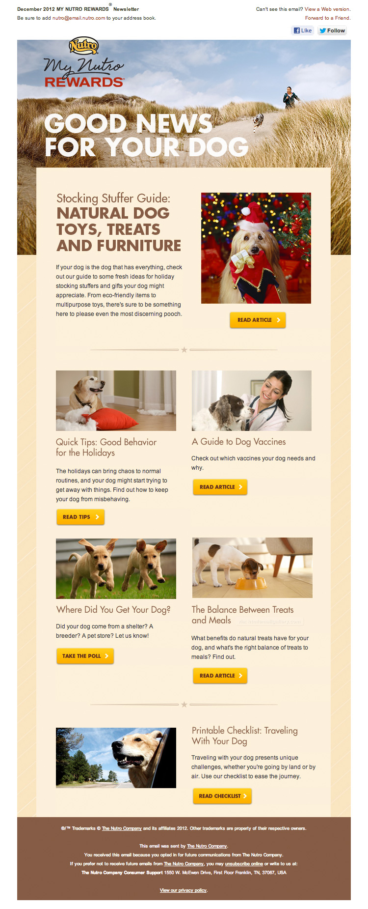 Good news for your dogs email html email gallery for Newsletter design inspiration