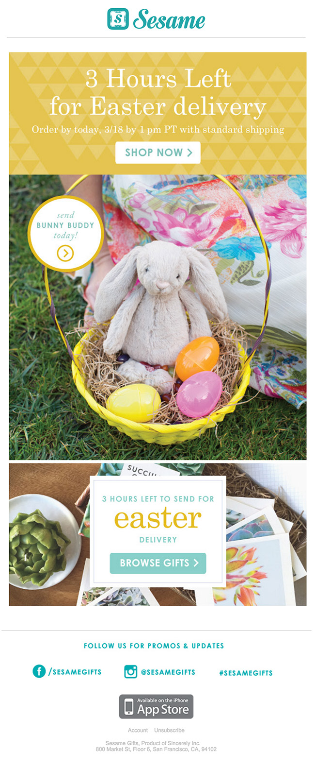 Sesame Gifts Easter Email colorful